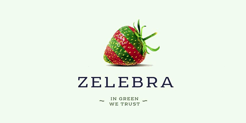 Разработка стратегии маркетинга вег-ресторанов ZELEBRA, разработка дизайна Tough Slate Design (КИЕВ)